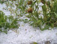 Комисии описват щетите от вчерашните градушки в Централна България