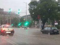 15 сигнала за паднали клони и дървета заради бурята в София