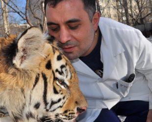 Ветеринар от Челябинск посвети живота си, за да помага на изпаднали в беда животни