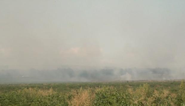 Голям пожар край калояновското село Бегово