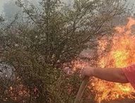 Овладян е пожарът в Искърското дефиле до село Реброво