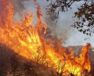 Екстремален индекс за пожароопасност е в сила на места в три области