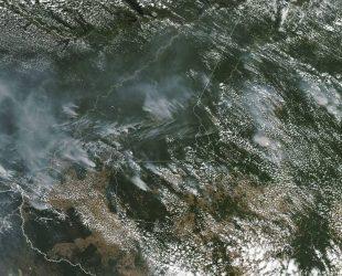 Пожарите в Амазонската джунгла са най-тежката подобна стихия от десетилетия