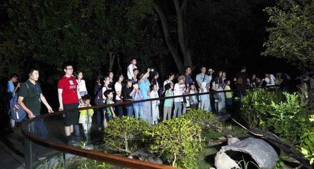 Зоопаркът в Шанхай предлага и нощни посещения
