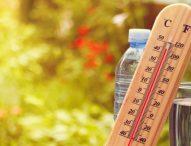 Очаква ни топъл месец март с променливо време, типично за сезона