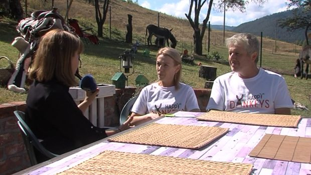 """Как един италианец реализира """"магарешкия рай"""" в село Маджаре?"""