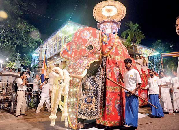 В Шри Ланка се проведе празникът Перахера