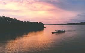 Хиляди костенурки бяха пуснати в река в Амазония