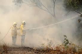 Токсичен облак дим от горските пожари, бушуващи в Източна Австралия, достигна столицата Канбера