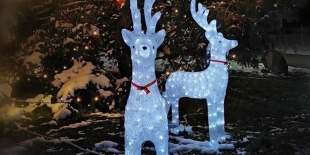 """Парк """"Възраждане"""" в столицата посрещна Дядо Коледа"""