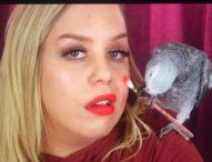 Папагал, гримиращ стопанката си разсмя потребителите на социалните мрежи