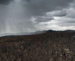 Дъжд заваля над пожарите в Австралия