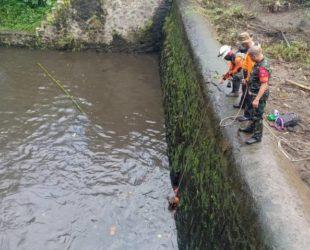 8 ученици бяха отнесени от внезапен прилив на река в Индонезия
