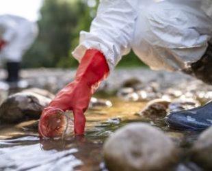 Реките Юговска и Чепеларска са отровени с цианид
