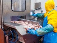 Над половината фирми отчитат спад на продажбите заради коронавируса