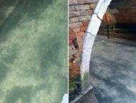 Каналите на Венеция са чисти и пълни с рибки заради карантината, въведена от италианските власти