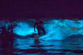 Луминисцентни вълни се появиха в Лос Анжелис