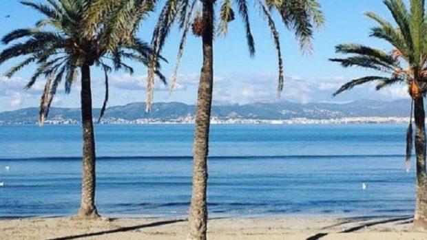 Хотелите в Майорка се подготвят да посрещнат първите си гости след карантината