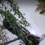 Откриха лек автомобил, паднал в река Струма край Кресна