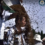 Китаец постави рекорд на Гинес като се покри с 64 килограма пчели