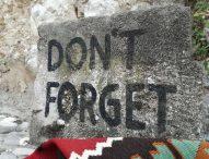 Босна и Херцеговина 25 г. след Дейтънското мирно споразумение