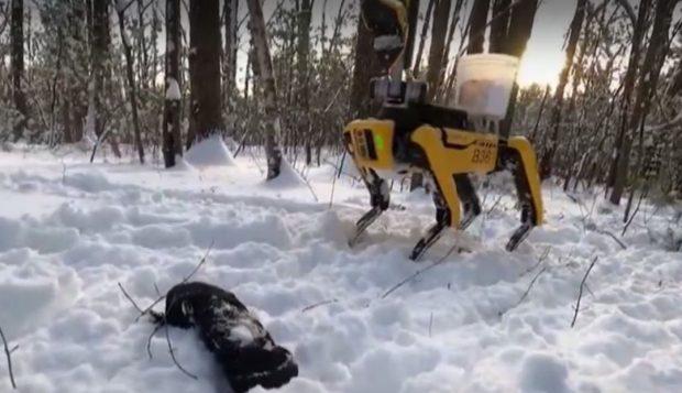 Американска компания пусна робот куче с мултифункционална ръка