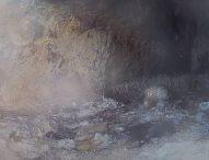 Излюпи се първото малко в гнездото на известната двойка египетски лешояди от Провадия